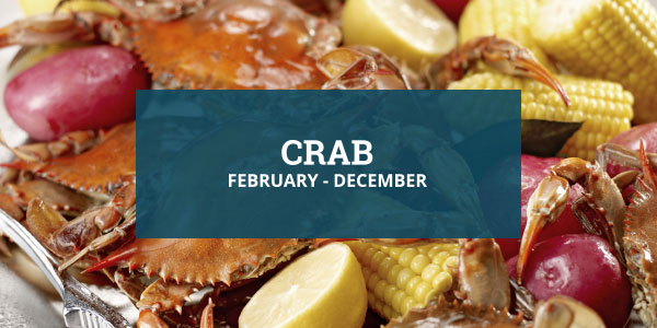 Louisiana Seafood Crab Season