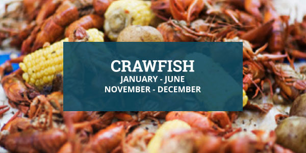 Louisiana Seafood Crawfish Season