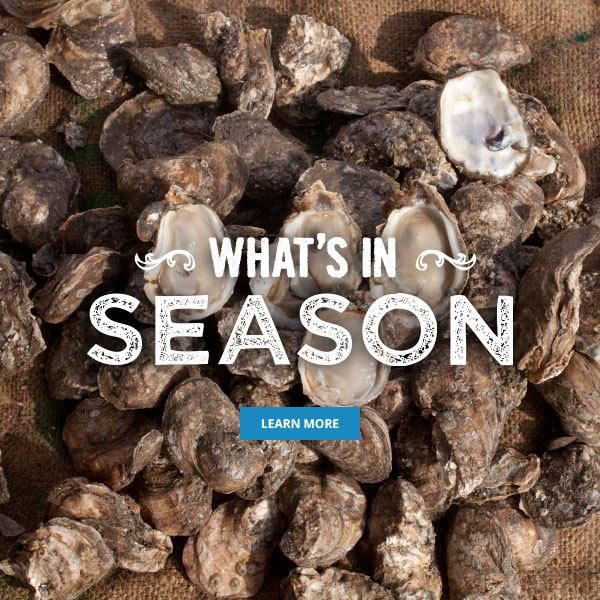 What's in Season - Louisiana Seafood